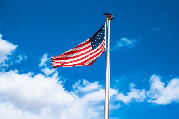 푸른 하늘에 미국 국기