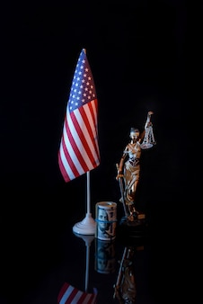 American flag with dollars and themis on reflective surface