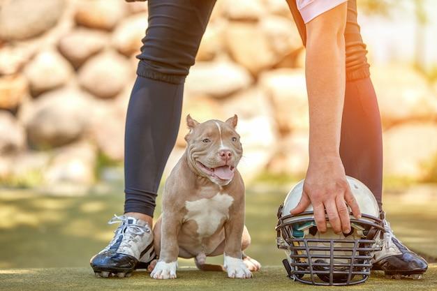 公園でカメラにポーズ犬とアメリカンフットボール選手。