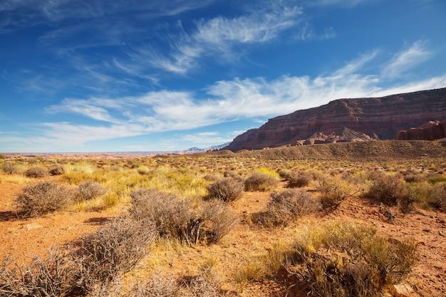 American landscapes- prairie in autumn season, utah,  usa. Premium Photo