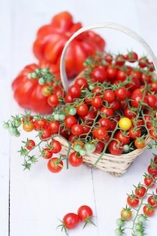 Американский ребристый помидор и мелкая вишня на ветках