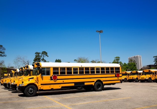 American typical school buses row in a parking lot