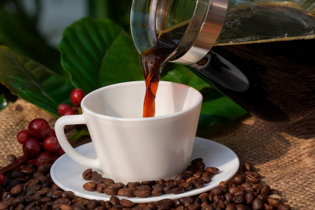 Americano coffee in a white coffee cup with raw and roasted coffee beans background.