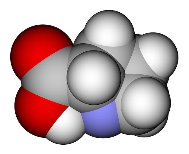 아미노산 프롤린 분자 구조