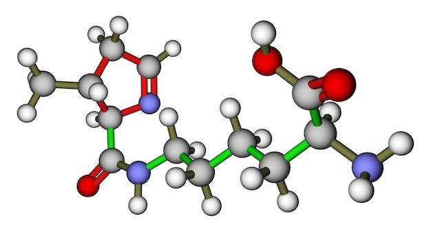 아미노산 pyrrolysine 3d 분자 구조