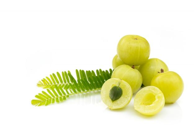 Amla green fruits ,phyllanthus emblica isolated