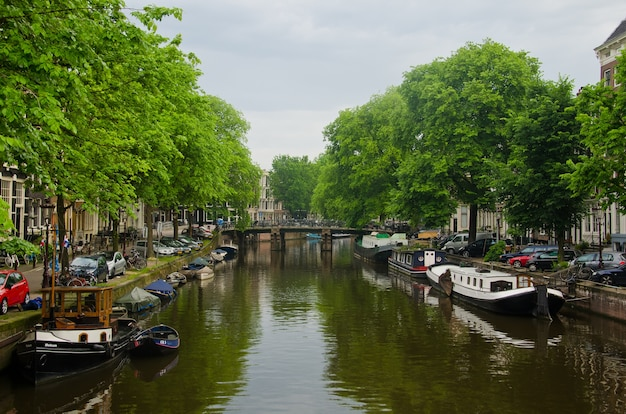 Амстердамская городская сцена
