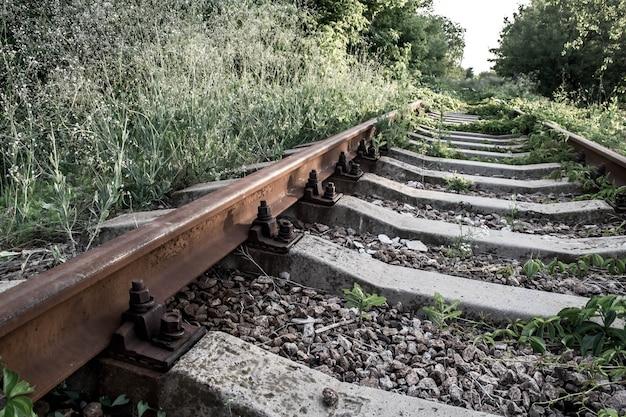 森を抜ける廃線。