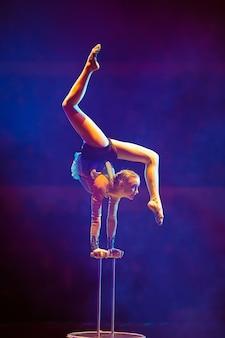 공중 체조 선수가 서커스 경기장에서 공연을 보여줍니다.