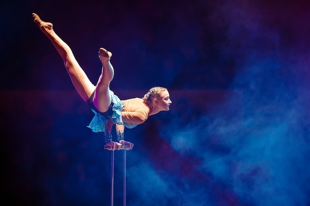 空中体操選手がサーカス競技場でパフォーマンスを披露します。