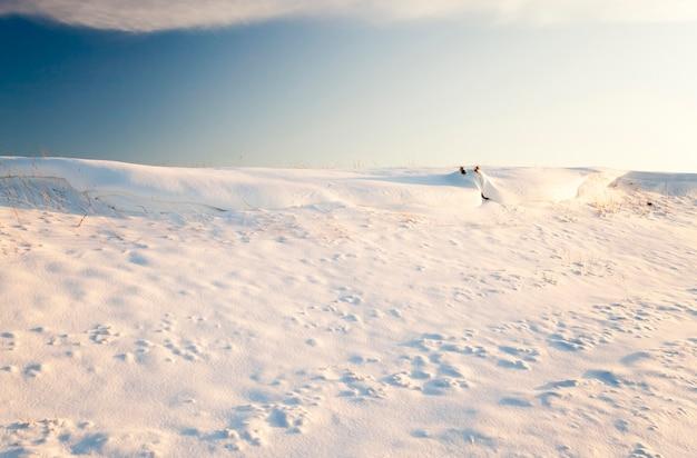 Сельскохозяйственное поле в зимний сезон. поле засыпано снегом после снегопада