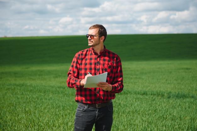 農学者が畑で若い小麦の熟成過程を調査します。農業ビジネスコンセプト。農家は小麦畑で働き、小麦もやしの品質を検査します