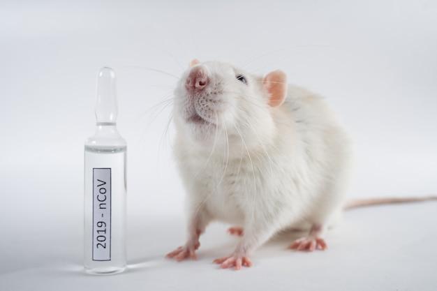 Животное стоит рядом с вакциной 2019-ncov на белом фоне