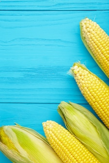 コピースペースと青い背景にトウモロコシの穂。
