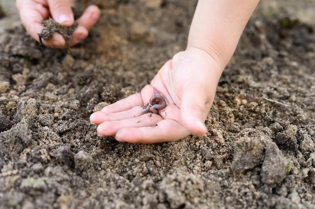 庭の春に子供の手にミミズ