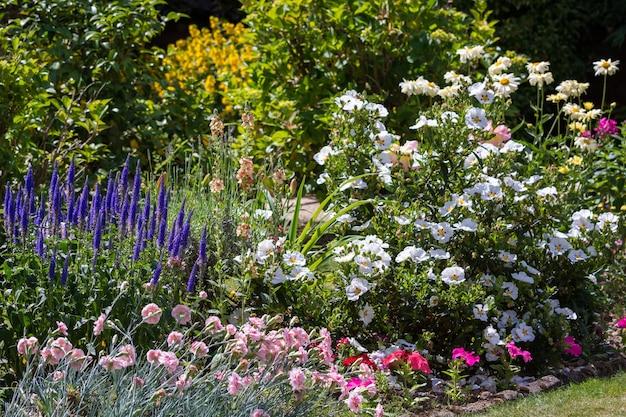 Сад ист-гринстед в полном расцвете