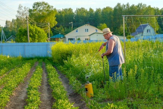 Пожилой мужчина в шляпе распыляет инсектицид на ботву картофеля. борьба с колорадским жуком и другими вредными насекомыми. летний солнечный вечер.