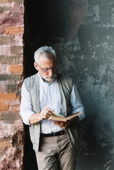 An elderly man standing in front of concrete wall reading book