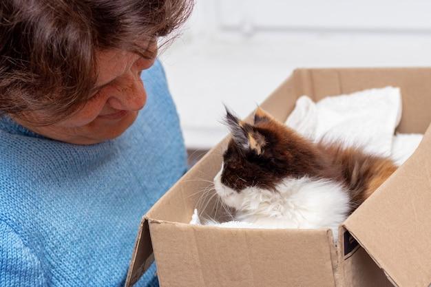 小さなふわふわの子猫と箱を持っている年配の女性。女性は子猫を賞賛する