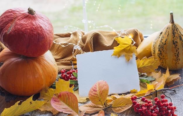 Пустая карточка для текста, макет макета, осеннее поздравительное письмо на осеннем фоне желтых опавших листьев, оранжевые тыквы. осеннее настроение и падающие листья