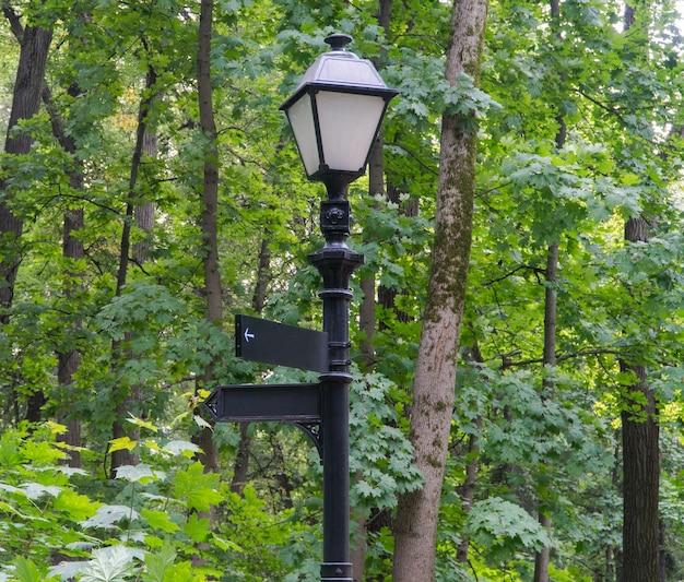 나무 배경에 있는 공원의 가로등 기둥에 있는 빈 표지판