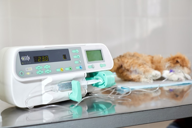 輸液ポンプは、クリニックで病気のマルプーの子犬にゆっくりと薬を注射するために使用されます