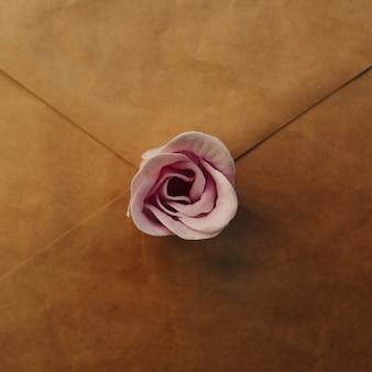 오래 된 갈색 봉투, 파란색 배경에 핑크 장미 꽃. 최소 평면 배치