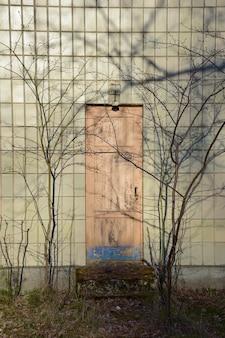 Старая закрытая дверь в стене, облицованной прямоугольной плиткой. на стене отражаются тени ветвей деревьев без листьев.