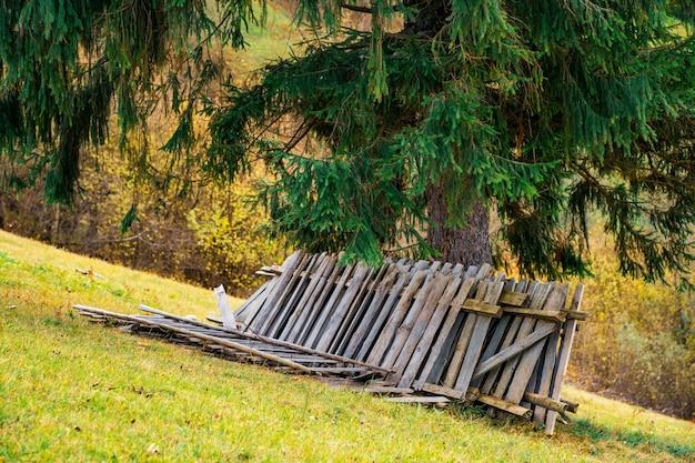 Старый обрушившийся забор лежит на свежем зеленом лугу возле большого лиственного дерева на фоне осенних лесов карпат.