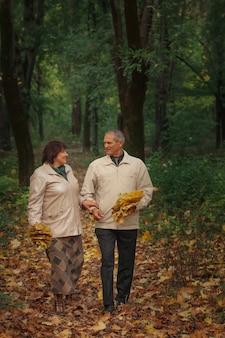 노부부의 연금 수령자는 가을 공원을 산책하고 손을 잡고 웃고 황금빛 잎을 모 읍니다.