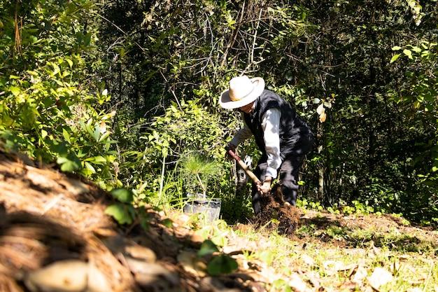 화창한 날 숲 한가운데에 나무를 심기 위해 삽을 사용하여 땅에 구멍을 파는 노인