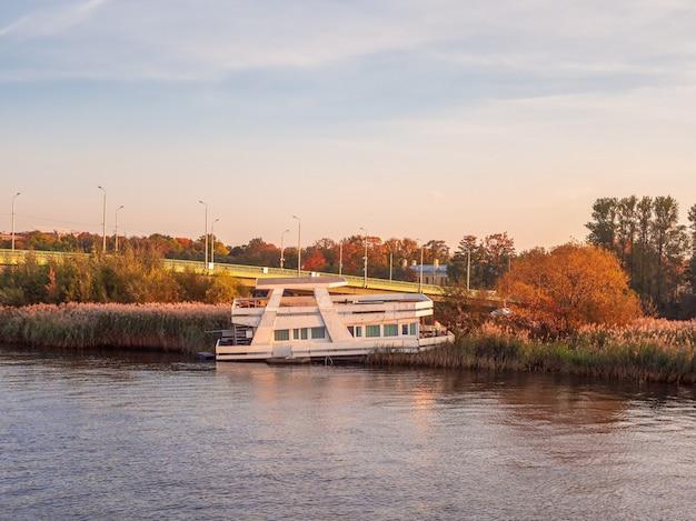 古い川船が背の高い草の中に座礁した