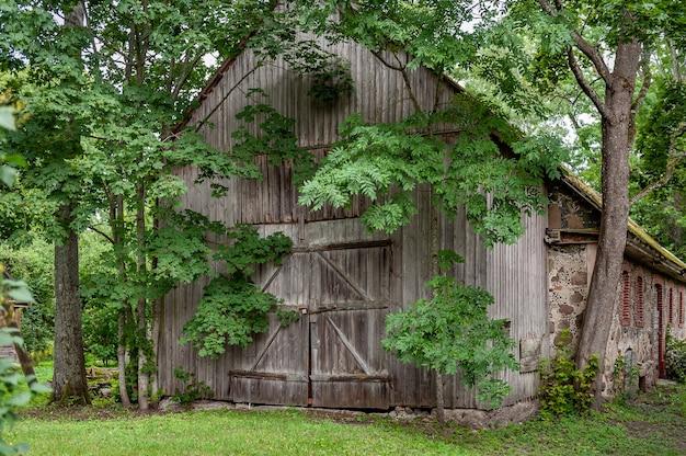 Старый деревянный сарай, заросший деревьями, в которые сложно попасть.