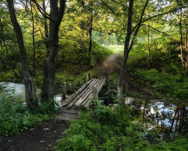여름 숲에서 작은 강 위에 오래 된 목조 다리
