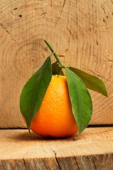 木の幹のスライスに緑の葉を持つオレンジ