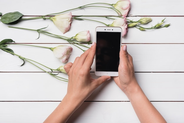 An overhead view of a person using cell phone with eustoma flowers on wooden desk