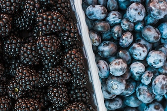 An overhead view of blackberries and blueberries