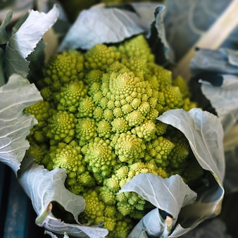 Верхний вид зеленой цветки романеско цветной капусты