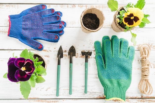 나무 책상에 미니 원예 장비와 팬지 꽃 이탄 냄비의 오버 헤드보기