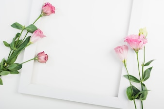 An overhead view of pink flowers on empty white frame over white backdrop