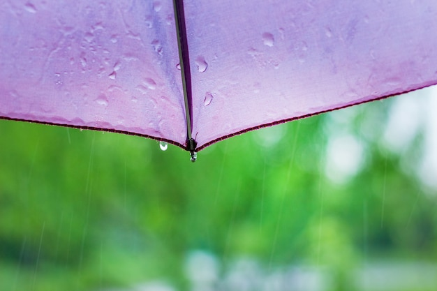ぼやけた緑の背景に雨の滴と傘