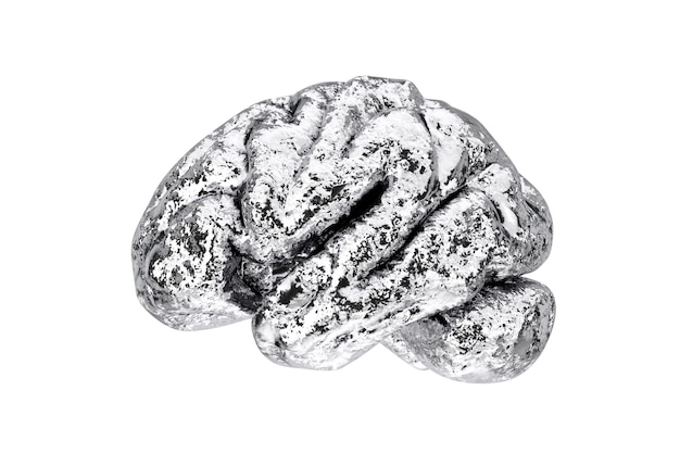 Anatomical model of human silver brain on a white background. 3d rendering