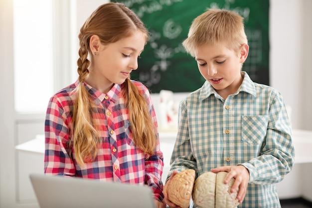 해부학 수업. 인간의 두뇌를 보면서 함께 서있는 똑똑한 좋은 아이