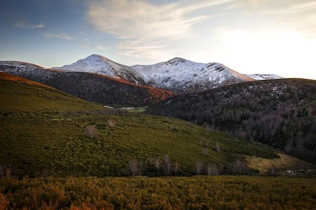 나무와 잔디로 둘러싸인 스페인의 ancares 산