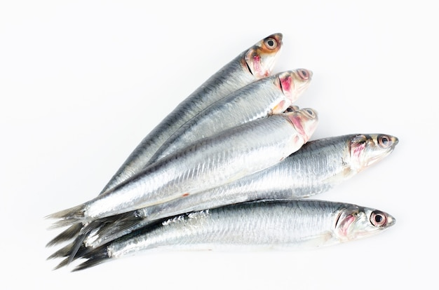 Anchovies on white surface