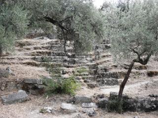 Ancient amphitheater in herakleia