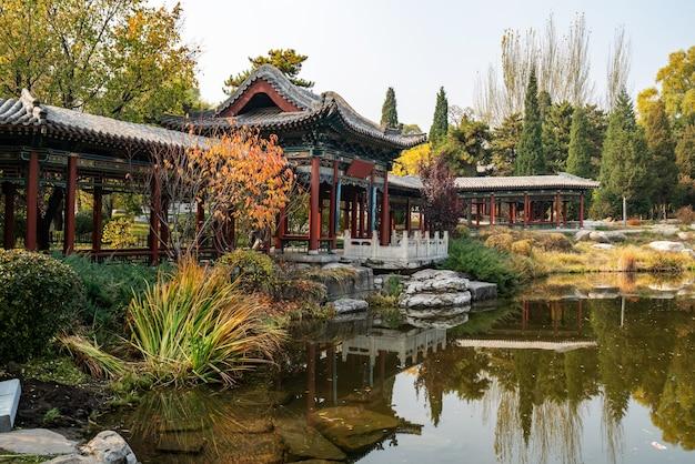古代の建物のロフトとイチョウの木は、jinci park taiyuan shanxichinaにあります