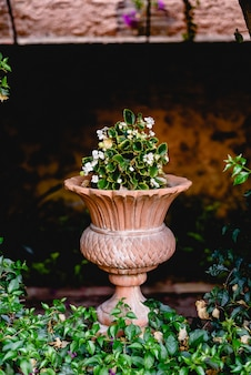 Ancient carved stone vase in a european garden with flowers.