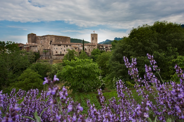 Ancient castle under white clouds and blue sky with lilac flowers in foreground