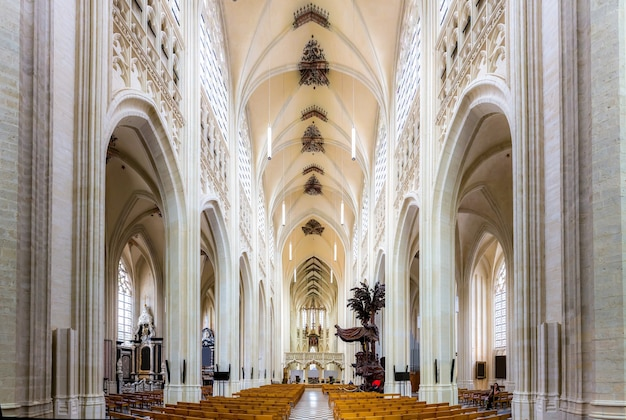 Ancient cathedral church hall with benches, europe